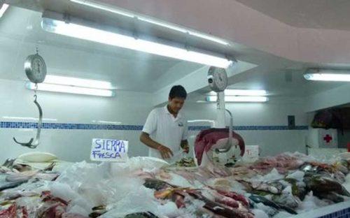 aumenta-demanda-pero-disminuye-la-pesca-en-bahia-de-banderas