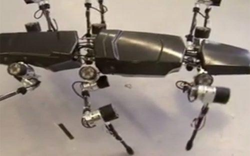 robot-insecto-podria-ser-el-nuevo-explorador-de-planetas