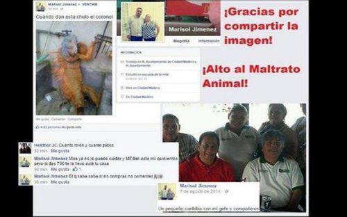empleada-municipal-vende-iguana-en-facebook