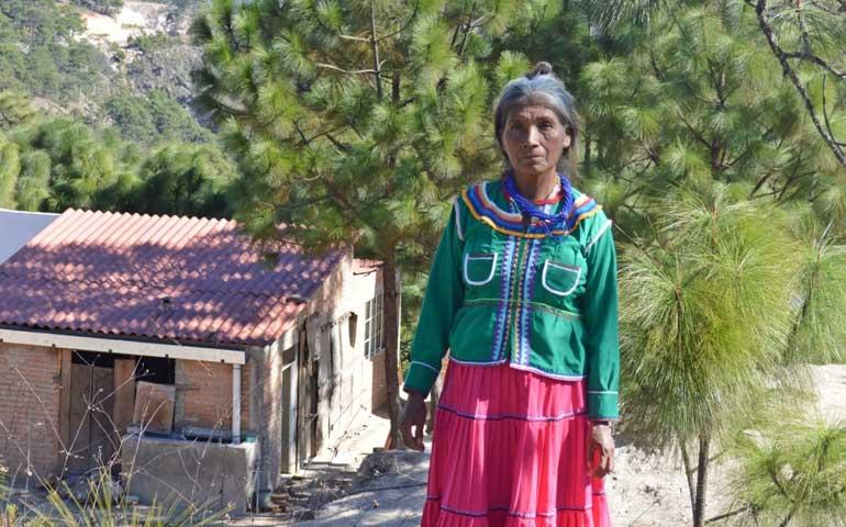 se-edificaran-350-viviendas-en-las-zonas-indigenas
