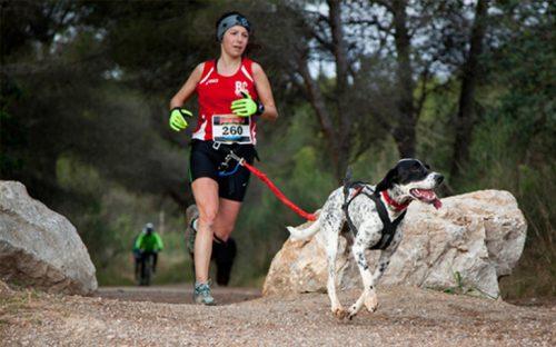 canicross-la-moda-de-hacer-ejercicio-con-tu-perro