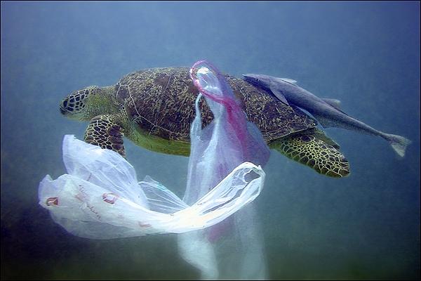 toneladas-de-plastico-asfixian-a-oceanos