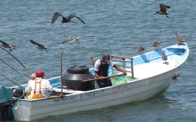 marina-capacita-en-materia-de-regulacion-a-pescadores
