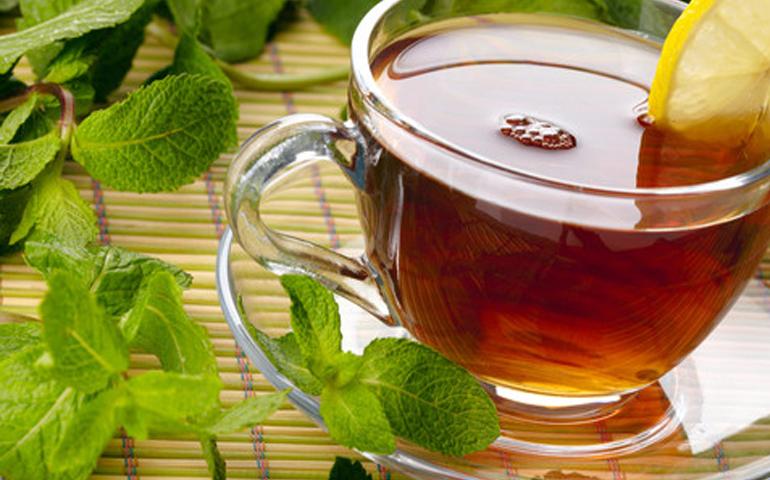 10-plantas-medicinales-y-como-utilizarlas-para-la-salud-de-tu-organismo