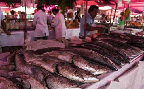 pescado-alcanza-precio-promedio-de-50-pesos-el-kilo