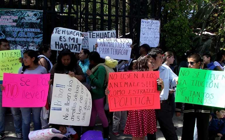 protestan-en-zoologico-de-diputado-panista