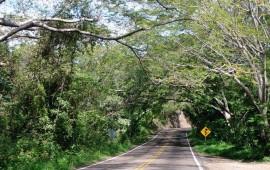 angeles-verdes-informan-sobre-carreteras-de-riesgo