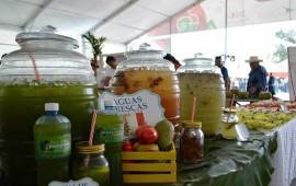 bahia-de-banderas-muestra-su-gastronomica-en-la-feria-nayarit-2015