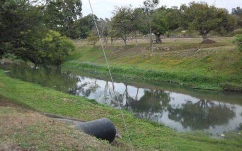 caimanes-en-rio-mololoa