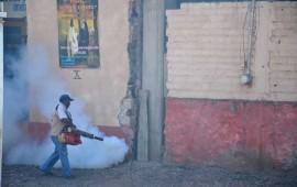 debemos-luchar-contra-el-dengue-ssn