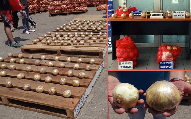 decomisan-33-kilos-de-cocaina-disfrazados-de-cebollas