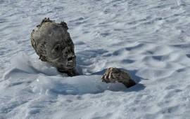 informan-hallazgo-de-segundo-cuerpo-congelado-en-el-pico-de-orizaba