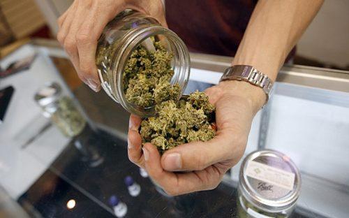 farmacias-de-uruguay-ya-podran-vender-marihuana