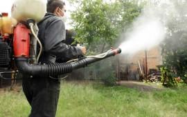 comienza-ayuntamiento-de-jala-operativo-para-prevenir-el-dengue