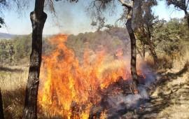hay-reduccion-en-numero-de-incendios-adahan-casas