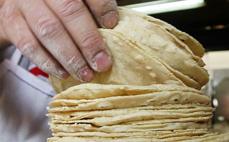 promoveran-el-voto-hasta-en-las-tortillas