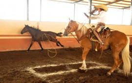 rancho-las-cuatas-es-campeon