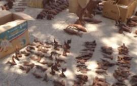aseguran-789-artesanias-elaboradas-con-madera-protegida
