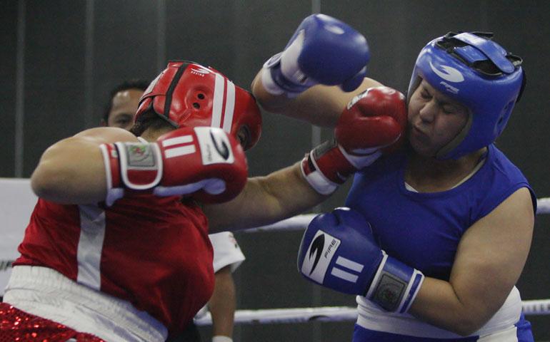 boxeadores-dorados