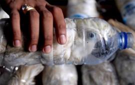 decenas-de-cacatuas-son-descubiertas-atrapadas-en-botellas