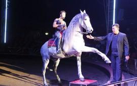 en-octubre-queda-prohibido-el-uso-de-animales-en-circos