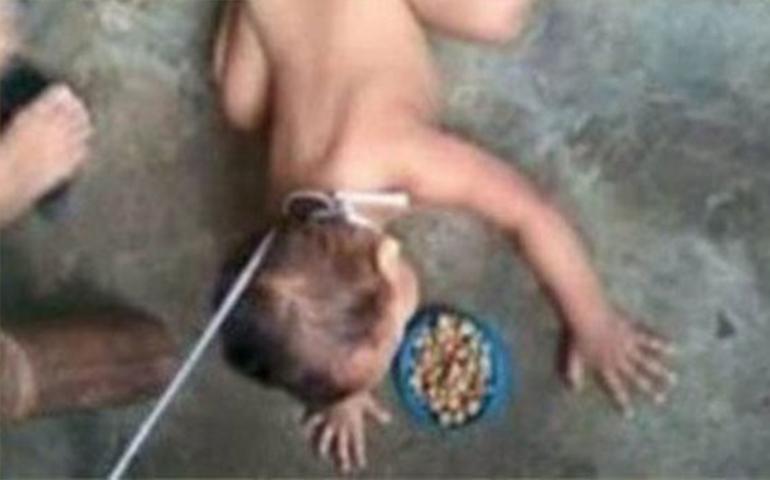 indignante-trata-a-su-bebe-como-un-perro-publica-foto-en-facebook