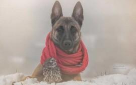 perro 2