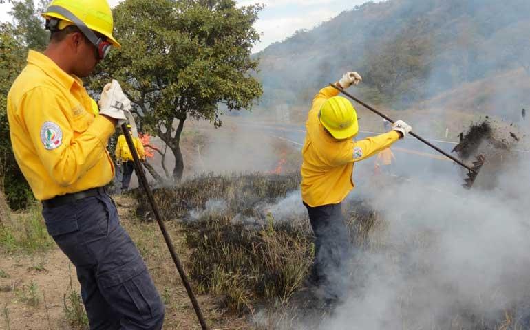 solo-se-han-registrado-19-incendios-forestales