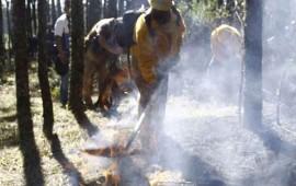 aumentan-incendios-intencionales-en-bosques-de-nayarit