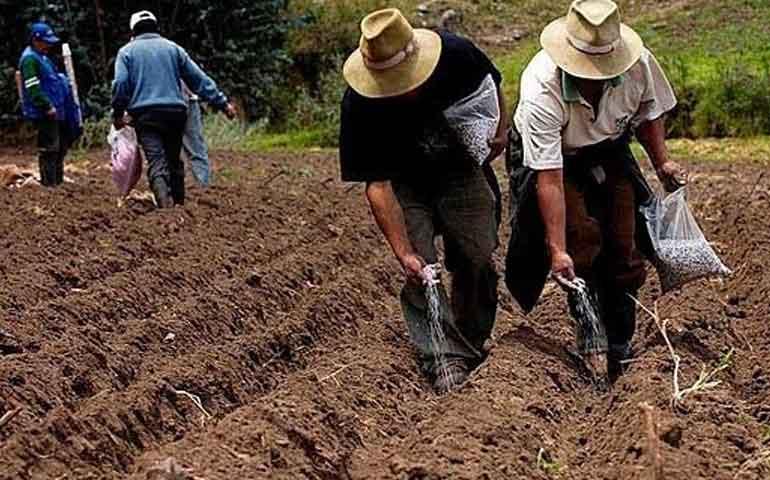 campesinos-de-santiago-ixcuintla-y-tuxpan-deben-300-mdp