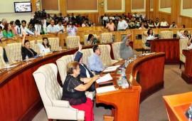 aprueban-reformas-para-combatir-el-dengue-y-chikungunya