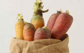 cuales-son-los-vegetales-con-mas-proteinas