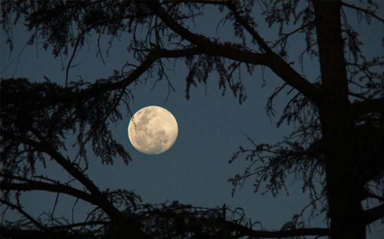 esta-noche-habra-luna-azul-en-el-cielo