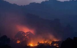 logran-contener-en-20-incendio-forestal-en-california