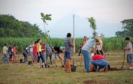 reforestaran-predio-de-san-vicente-en-riviera-nayarit