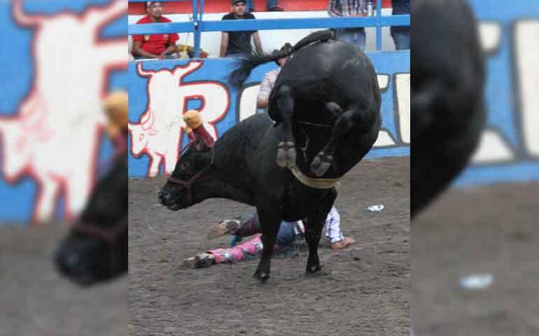 torneo-de-toros-reparo-rancho-de-aguas-2015