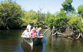 el-mangle-da-valor-ecologico-y-turistico-a-riviera-nayarit