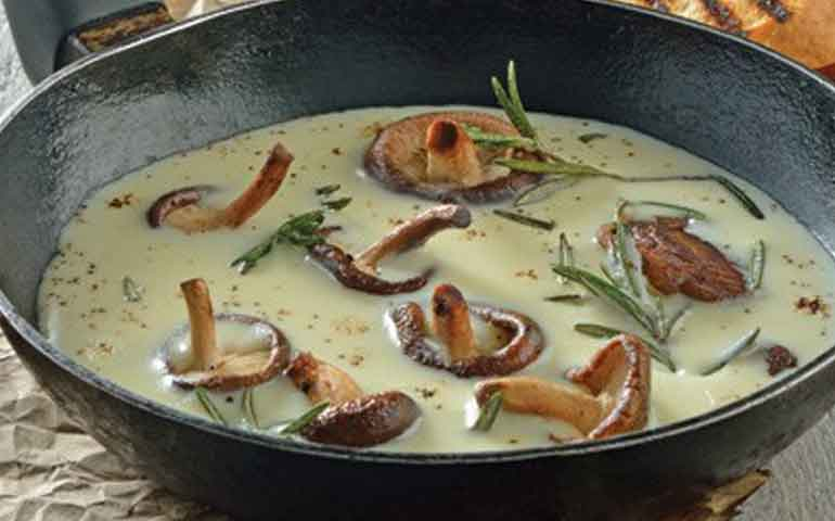 hongos-en-salsa-blanca