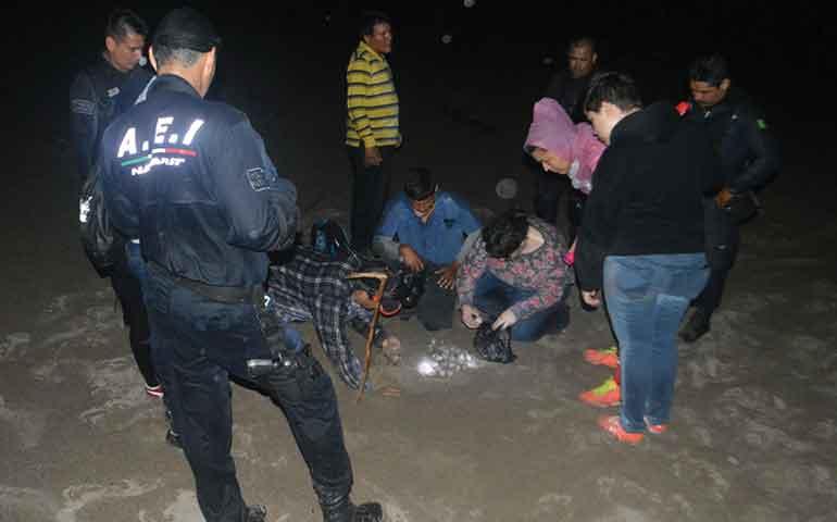 policia-nayarit-resguarda-seguridad-en-campamento-tortuguero-platanitos