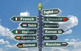 y-tu-sabes-que-es-interlingua-no-es-un-centro-de-idiomas