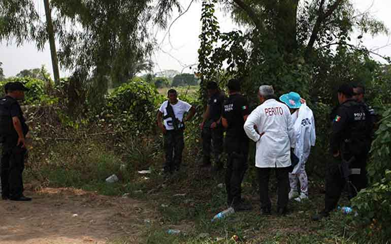 encuentran-siete-cuerpos-en-fosa-clandestina-de-acapulco