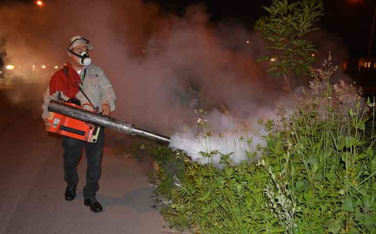 fortalecen-las-acciones-para-combatir-el-dengue-y-chikungunya