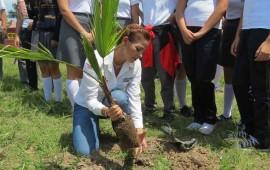 gobierno-de-nayarit-realiza-programa-de-reforestacion-social