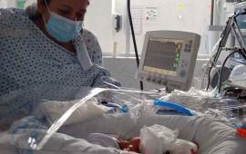guanajuato-registra-nacimiento-de-septillizos