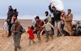 mexico-podria-dar-asilo-a-refugiados-sirios
