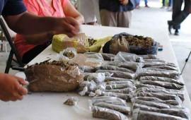 pgr-asegura-mas-de-una-tonelada-de-marihuana-en-jalisco