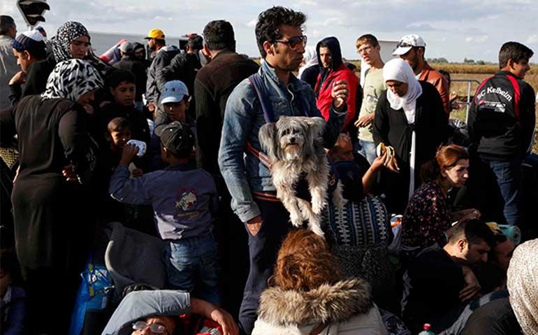 reino-unido-alemania-francia-belgica-y-chipre-ofrecen-asilo-a-miles-de-refugiados
