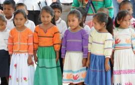 gobierno-estatal-elabora-programas-de-estudio-en-lengua-indigena