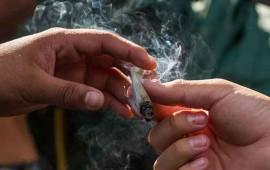 cofepris-suma-57-solicitudes-para-uso-ludico-de-mariguana