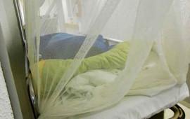 confirman-en-mexico-el-primer-caso-del-virus-zika